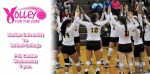 VOLLEY FOR THE CURE - PAINT THE GYM PINK TOMORROW NIGHT